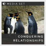 Conquering relationships