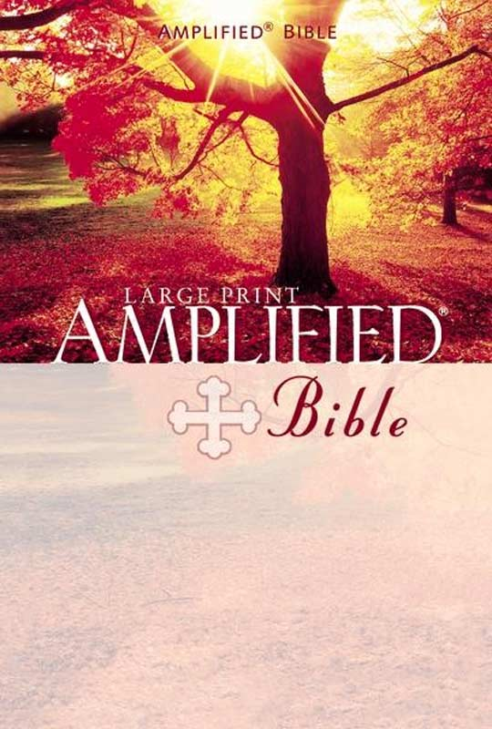 the-amplified-bible-large-print